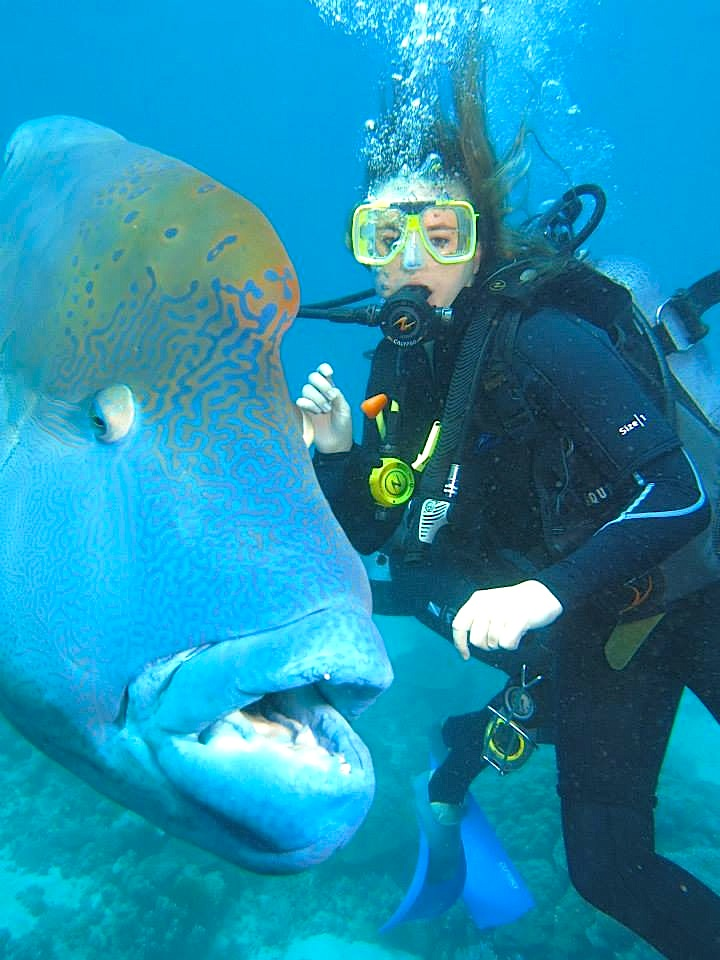 Student scuba diving with a large fish next to her